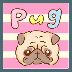 [LINEスタンプ] パグのスタンプ (1)