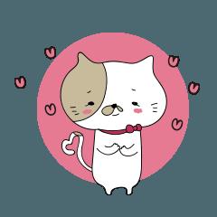 ネコジョの恋美 顔,ネコ/身体,オコジョ美活
