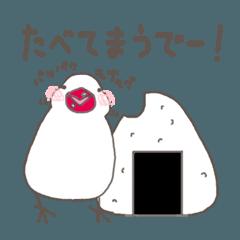 関西弁の白文鳥 3