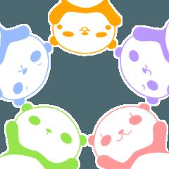 5色パンダ