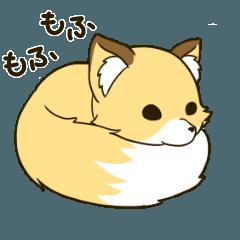 キツネの狐丸