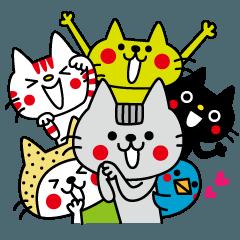 CATS & PEACE 6 × かまねこ