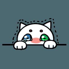[LINEスタンプ] 涙ネコ~白まろとふるえる?~ (1)