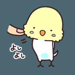 インコん家 【日常会話編】