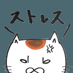 ストレス猫
