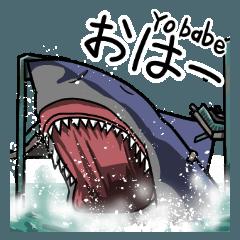サメが来る!