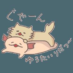 ウーパールーパーちゃんとネコちゃん