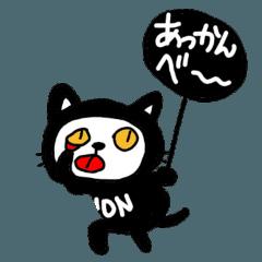 黒猫のノンちゃん