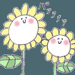 かわいいボールちゃんの夏
