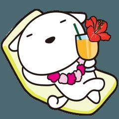 がんばる犬の夏