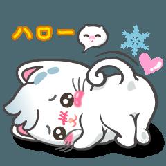 スノーウィー猫