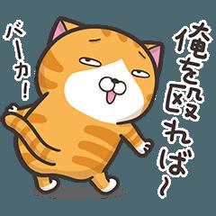 動く!ランラン猫