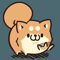 ボンレス犬 Vol.4