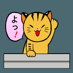 動くねこ!つしまやまねこ (絶滅危惧種猫)