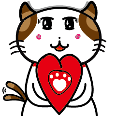 Steanifu's cat