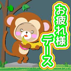 "Baby Bear ""サル後輩"""