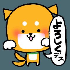豆柴便り ~あいづち編〜