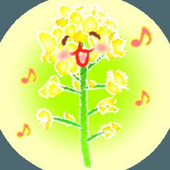花andメッセージ