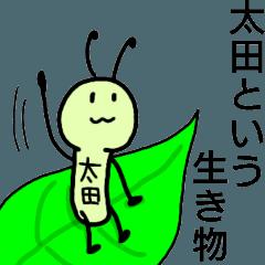 太田という生き物