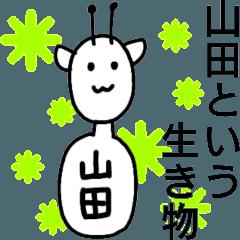 山田という生き物