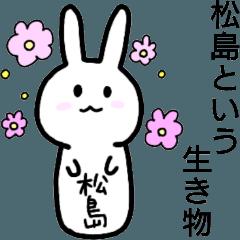 松島という生き物