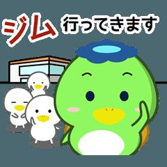 キノカッパ3 ジム水泳編