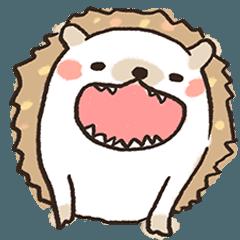 Hedgehog Kun!