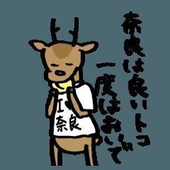 奈良の鹿くん
