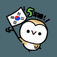 メンフクロウのまめふくちゃん5【韓国語】