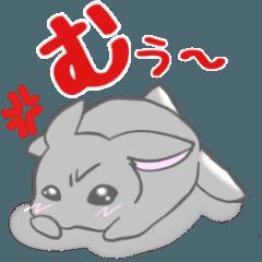 飼いウサろっぴ【ゴキゲン斜め編】