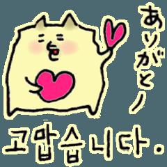 基礎韓国語*日常会話*ポメラニアン