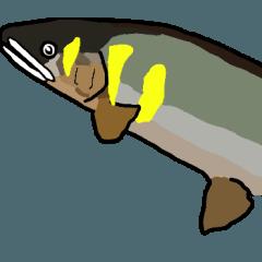 鮎友釣り師の常用語♪