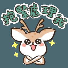 Hedgehog Kun!2
