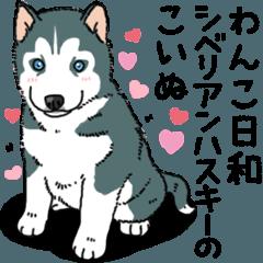 わんこ日和 シベリアンハスキーの仔犬
