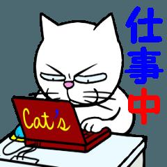 """不愛想な猫""""ニャンタロ―"""" 2"""