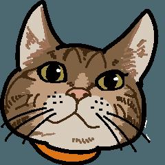キジトラ猫さんの日常スタンプ