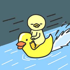 P'duck animated