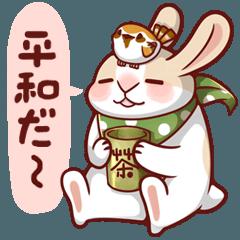 フェイトゥ ウサギ 3 - 入力が面倒だから編
