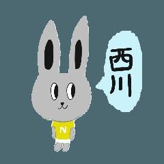 うさぎの西川さん