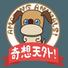 TBSテレビ どうぶつ奇想天外!2016