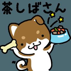 [LINEスタンプ] 茶しばさん (1)