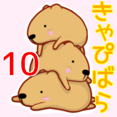 きゃぴばら10
