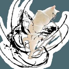 自由すぎる!無重力猫ミルコ