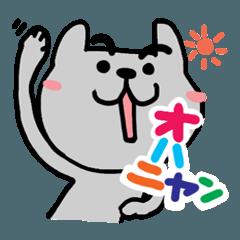 可愛い猫(CAT)