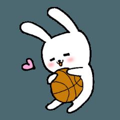 バスケ大好き白うさぎ