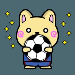 ボブのワールドサッカー