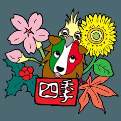 イタリア語かいわんこ 4 【四季】