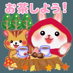 森の赤ずきん☆うさっぴ2