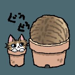 オノマトペとニャン語の猫たち