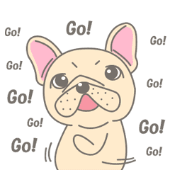 動く!Frenchy the French Bulldog